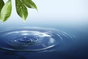 Importance of Water : Essay, Article, Speech, Paragraph, Composition, Note